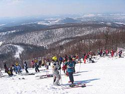 Белорецкая команда стала победительницей региональных соревнований по горнолыжному спорту на приз «Солнечные зайчики»