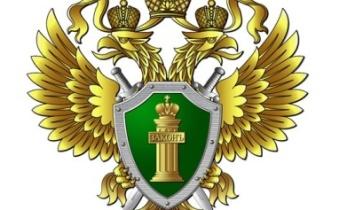 Белорецкая межрайонная прокуратура добилась ликвидации несанкционированной свалки